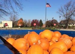 Annual Pumpkin Pitch