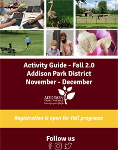 APD 2020 Fall 2.0 Brochure